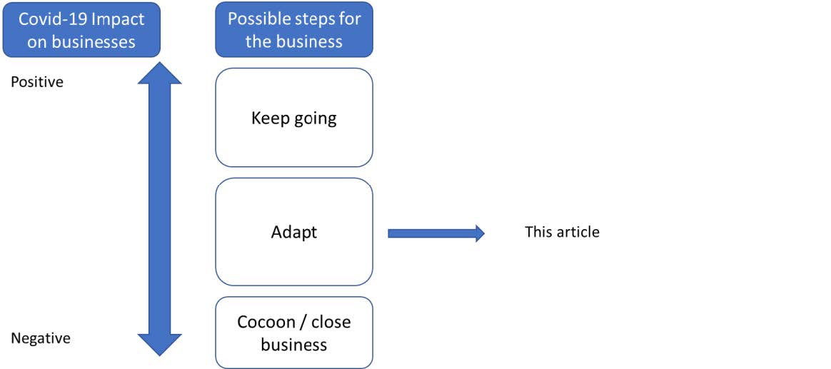 Pivoting And Repurposing A Business flow chart